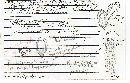 Gautieria monticola image