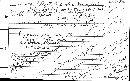 Sepultaria longii image