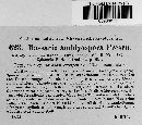 Image of Massaria amblyospora