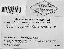 Image of Puccinia impedita