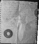 Amanita mutabilis image