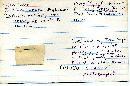 Pholiota malicola image