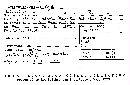 Image of Stereum coalescens