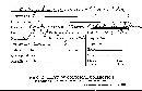 Thelephora multipartita image