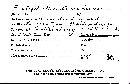 Inonotus tabacinus image