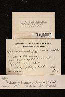 Cortinarius huronensis image