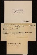 Cortinarius bulliardi image