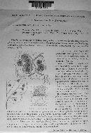 Mycosphaerella mori image