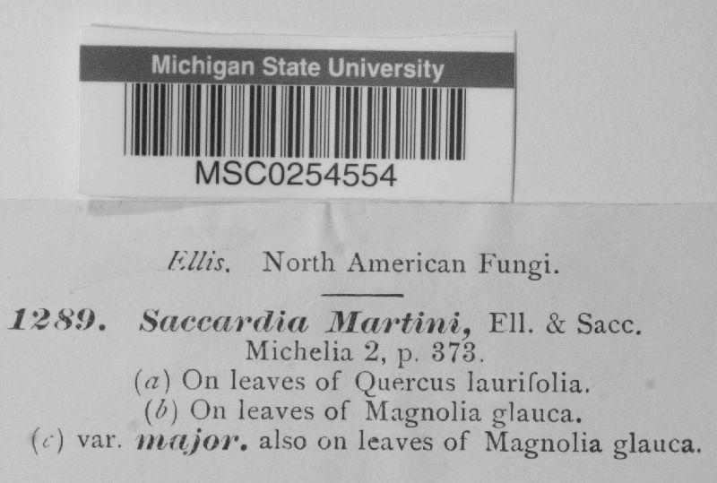 Saccardia martinii image