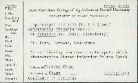 Diplocarpon earliana image