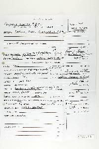 Polyporus sobrius image