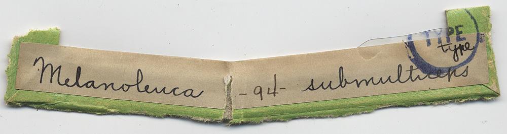 Melanoleuca submulticeps image