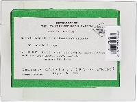 Bionectria ochroleuca image