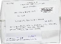 Bionectria apocyni image