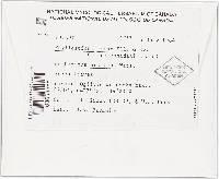 Phyllosticta ferax image