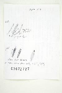 Russula erythropoda image
