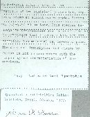 Hyphodontia subdetritica image